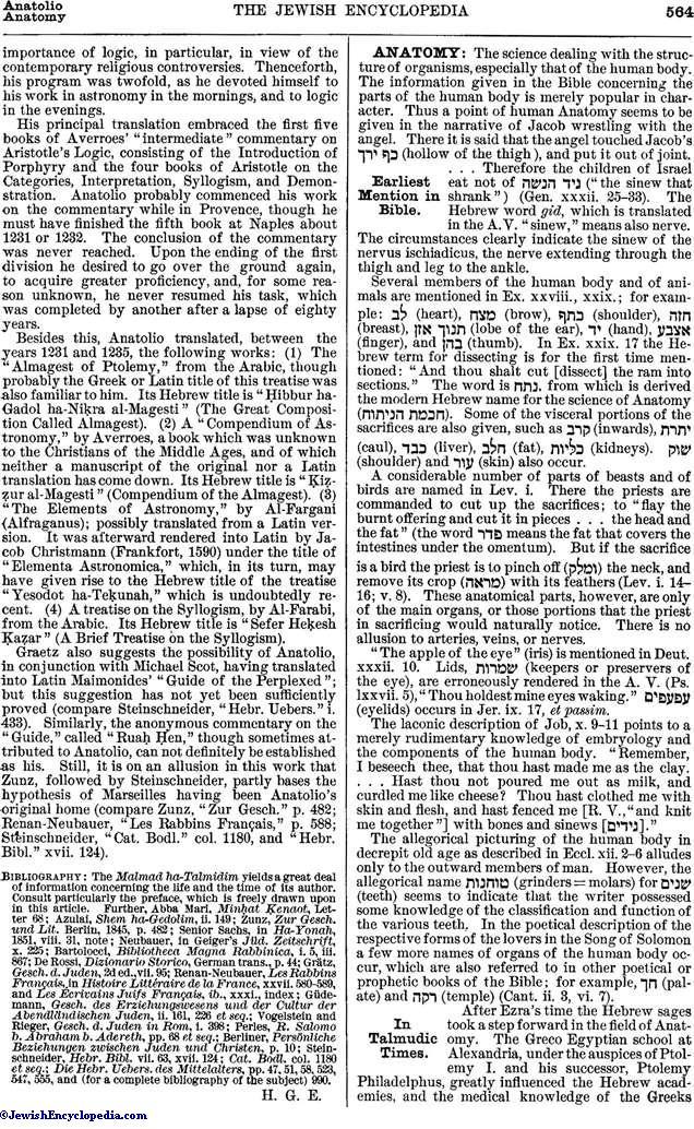 ANATOMY - JewishEncyclopedia com